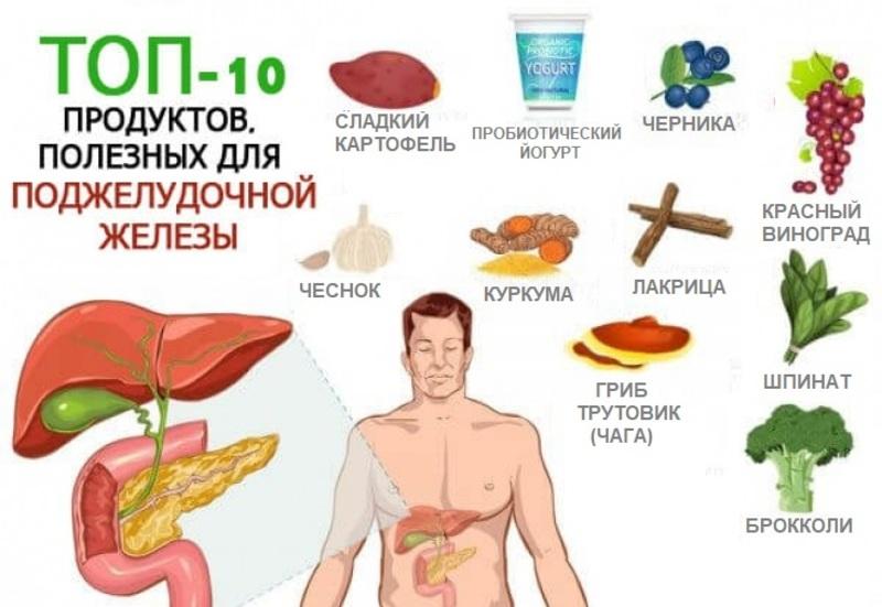 лучщие продукты для поджелудочной железы