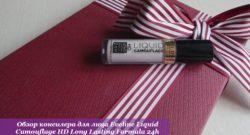 Обзор консилера для лица Eveline Liquid Camouflage HD Long Lasting Formula 24h (тон 06 IVORY)