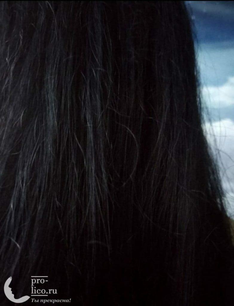 """Мой отзыв на облепиховый шампунь для нормальных и жирных волос """"Глубокое очищение и уход"""" от Natura Siberica"""